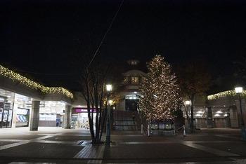 _IGP8514_Dencho_Tree720.jpg